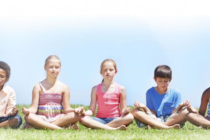 Cérebro Aprendizagem e Meditação: Treinamento intensivo para o sucesso em sala de aula